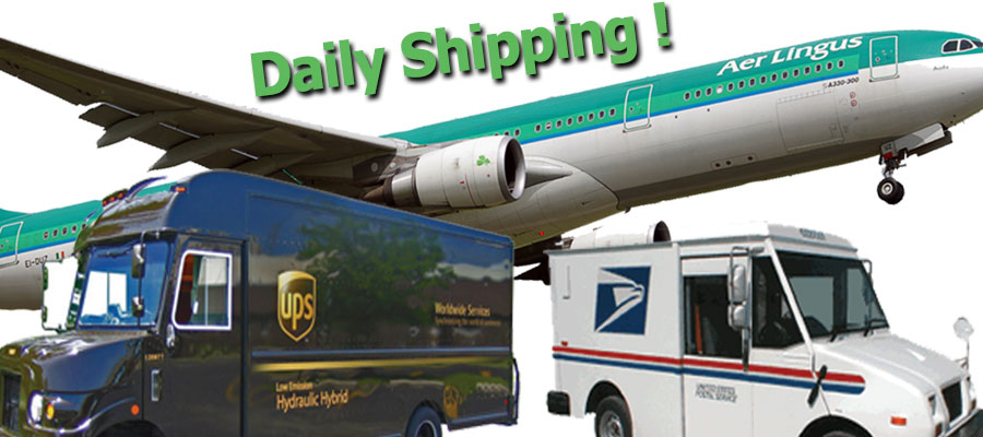 eIrish_Daily_Shipping_400